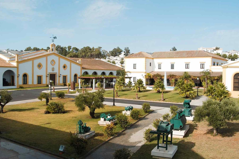 Bodega Real Tesoro y Valdespino